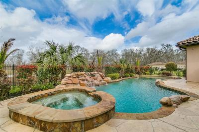 Fort Bend County Single Family Home For Sale: 1019 E Grand Estates Drive