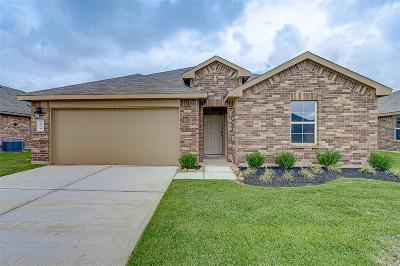 Fort Bend County Single Family Home For Sale: 1818 Welsh Canyon Drive