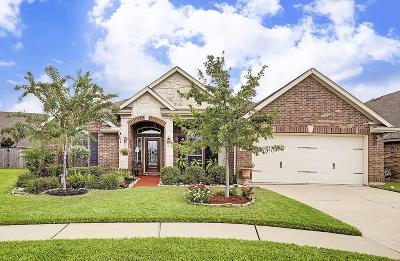League City Single Family Home For Sale: 2219 Summit Pass Lane