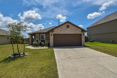 Rosenberg Single Family Home For Sale: 2411 Zephyr Lane