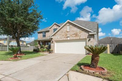 Sugar Land Single Family Home For Sale: 10742 White Bridge Lane