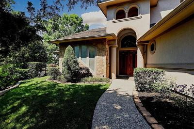 Montgomery Single Family Home For Sale: 317 Blue Heron Drive