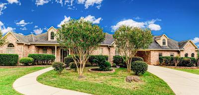 New Waverly Single Family Home Option Pending: 36 Long Horn Loop