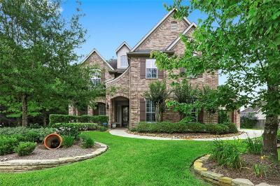 The Woodlands TX Single Family Home For Sale: $700,000