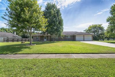 Alvin Single Family Home For Sale: 335 S Shirley Street
