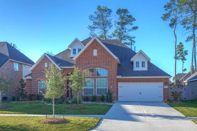 Conroe Single Family Home For Sale: 8140 Tranquil Lake Way