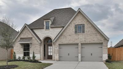 Pearland Single Family Home For Sale: 3704 Bonham Hills Lane