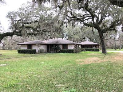 Brazoria Single Family Home For Sale: 4869 County Road 842