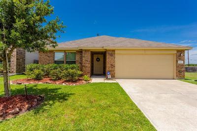 Katy Single Family Home For Sale: 2831 Defoe Drive
