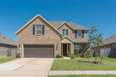 Pearland Single Family Home For Sale: 1227 Lazy Springs Lane
