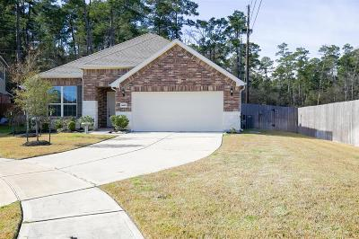 Tomball Single Family Home For Sale: 24631 Raven Cliff Falls Drive