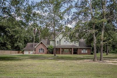 Dayton Single Family Home For Sale: 36 County Road 631
