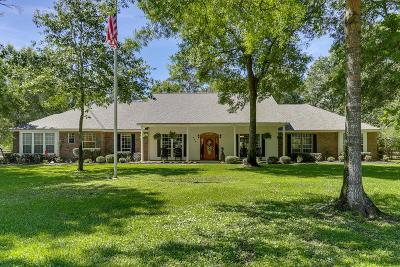 Huffman Single Family Home For Sale: 910 Winchester Bend