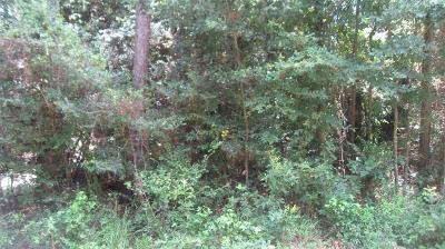 Conroe Residential Lots & Land For Sale: 00 Oxon Run