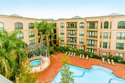 Sugar land Mid/High-Rise For Sale: 2299 Lone Star Drive #428