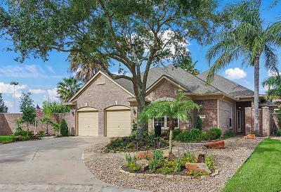 League City Single Family Home For Sale: 2418 Fairway Pointe Drive