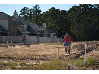 Spring Single Family Home For Sale: 24015 Rosedale Oaks Drive