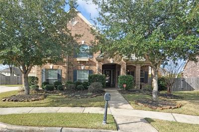Houston Single Family Home For Sale: 15710 Sandy Falls Court