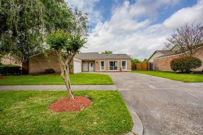 Houston Single Family Home For Sale: 10910 Braes Forest Drive
