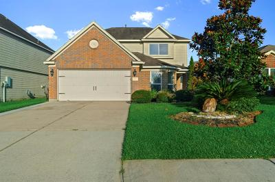Conroe Single Family Home For Sale: 16900 Tableland Trail