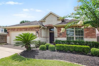Katy Single Family Home For Sale: 2815 Empire Oaks Lane