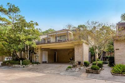 Houston Condo/Townhouse For Sale: 201 Vanderpool Lane #83