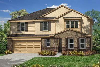 Pearland Single Family Home For Sale: 3812 Belmore Lane
