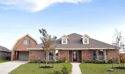 Manvel Single Family Home For Sale: 6742 Conroe Circle