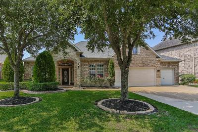 Fort Bend County Single Family Home For Sale: 2803 Misty River Lane