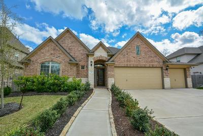 Missouri City Single Family Home For Sale: 22 Castello Lane