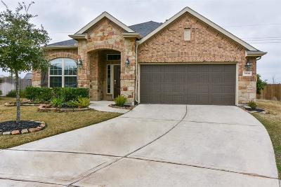 Spring Single Family Home For Sale: 31614 Echo Canyon Court