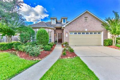 Sugar Land Single Family Home For Sale: 6707 Lathrop Court