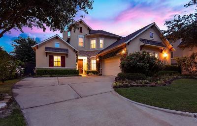 Houston Single Family Home For Sale: 11214 Castille Lane