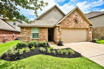 Katy Single Family Home For Sale: 22418 Lavaca Ranch Lane