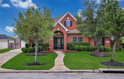 Tomball Single Family Home For Sale: 17327 Eagle Ledge Drive