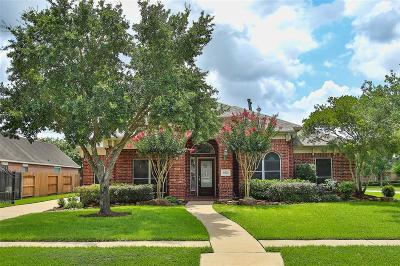 Houston Single Family Home For Sale: 16539 Torry View Terrace