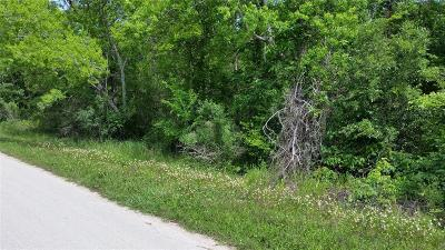 Brazoria Residential Lots & Land For Sale: Lot 96 N Belt Drive