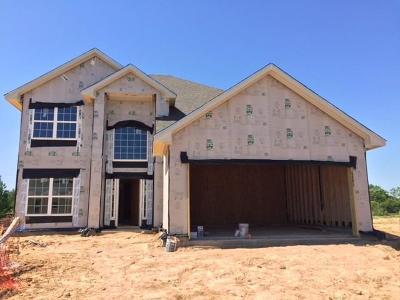 Katy Single Family Home For Sale: 24667 Lakcrest Pine Trail