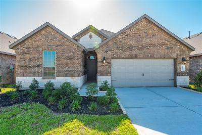 Katy Single Family Home For Sale: 29026 Endeavor River Road