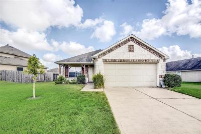 Tomball Single Family Home For Sale: 8606 Sunset Pond Drive