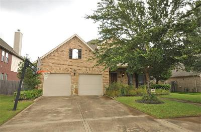 Sugar Land Single Family Home For Sale: 3810 Dover Bluff