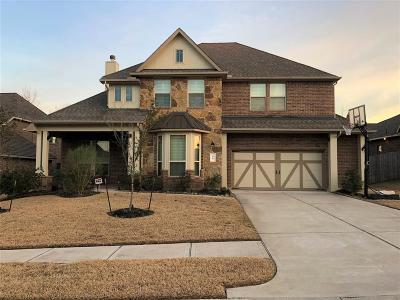 Conroe Single Family Home For Sale: 58 Chestnut Meadow Drive