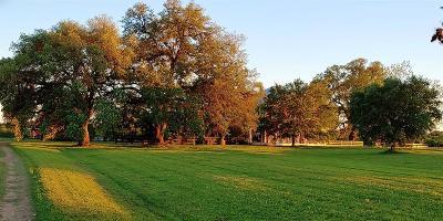 Washington County Country Home/Acreage For Sale: 840 Fm 390 Road E
