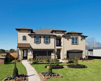 Missouri City Single Family Home For Sale: 9407 Scanlan Heights Lane