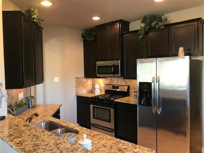 Texas City Single Family Home For Sale: 3113 Royal Albatross Drive