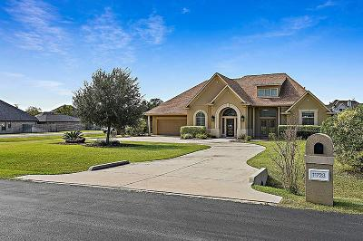 Single Family Home For Sale: 11723 W Grand Pond Drive
