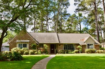 Houston Single Family Home For Sale: 13923 Pinerock Lane