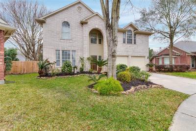 Houston Single Family Home For Sale: 13515 Pepperbush Court