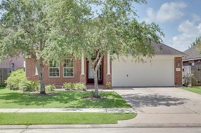 Pearland Single Family Home For Sale: 11806 White Water Bay Drive