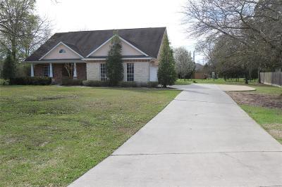 Single Family Home For Sale: 315 Amarillo Drive